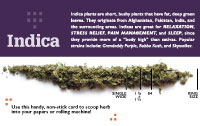 Weed Barn — Scoop card, indica