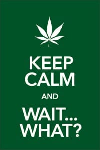 Keep Calm and Wait ... What? poster